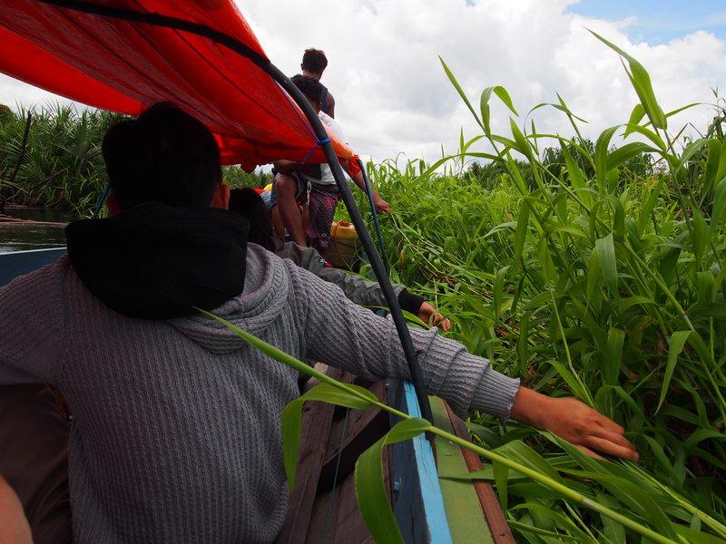 Borneo Field Trip, 2019, Photo: Christina Leigh Geros