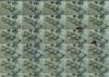 Colin Polwarth animation mosaic_CAV in city.jpg