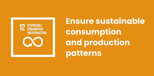 Sustainable Consumption and Production Patterns