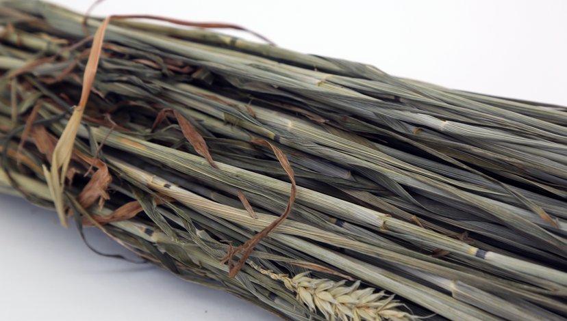 Wheat Crop Residues
