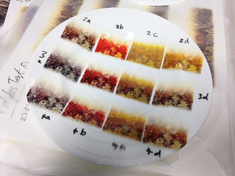Flame colourways sample plate